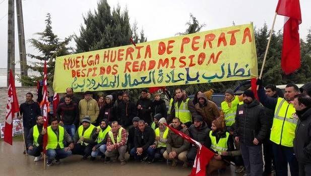 """Izquierda-Ezkerra hace un llamamiento a la empresa """"Huertas de Peralta"""" al diálogo y a la negociación"""" con sus trabajadores"""