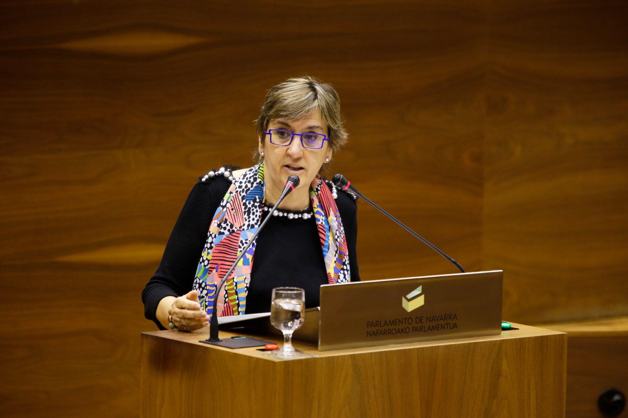 """Izquierda-Ezkerra vería un """"error"""" no aprobar ninguna de sus enmiendas a los Presupuestos y PSN y Bildu dicen que las estudiarán"""