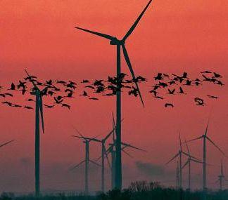I-E pregunta al Gobierno de Navarra por la instalación de un parque eólico de 75 aerogeneradores en las Bardenas Reales