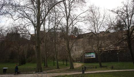 IE denuncia la tala de más de 50 árboles entre el Labrit y la Magdalena